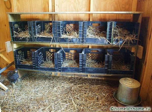 направи си сам кокошарник за 10 пилета